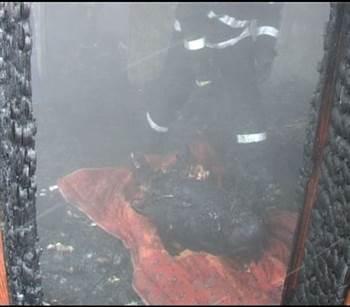 incendiu hirlau 2